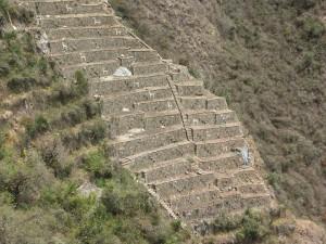 Choquequirao,choquequirau, Choque, llamas, llamitas, Peru, Machu Picchu, Inca Trail, trekking, hiking, trek, hike, Ollantaytambo, trips, tours, KB Tours, KB Tambo, KB Peru, KB, Ollantaytambo, alternate Inca Trail