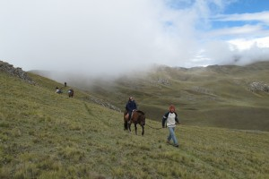 horsetrek 300x200 Horseback Riding