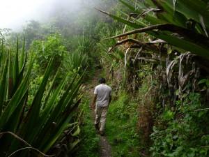 trek, trekking, trekking tours, trekking trips, peru, Machu Picchu, kb, kb tambo, kb tours, kb peru, Cuzco, Cusco, Choquequirao, choquequirau, inca trail, inka trail, Salkantay treks, Salkantay, Salkantay Trekking